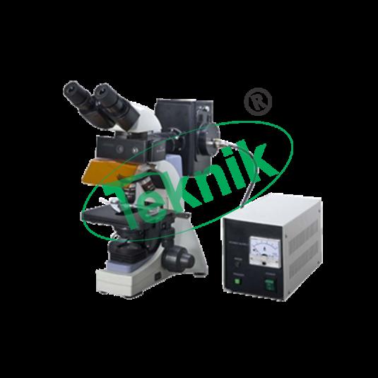 Microscope Equipment : Fluorecent Microscope