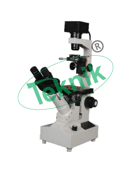 Microscope Equipment : Inverted Tissue culture microscope