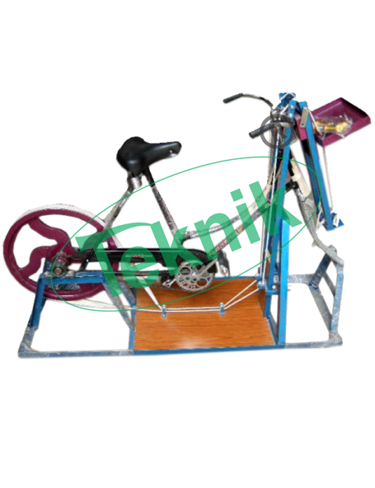 Pharmacology-Equipments-Bicycle-Ergograph