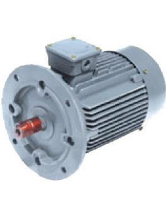 Three Phase Squirrel Cage Induction Motor